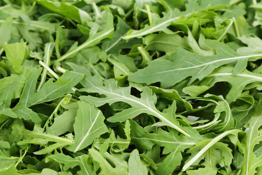 La salade meilleur accompagnement possible pour votre pizza actualit s pizza - Accompagnement salade verte ...